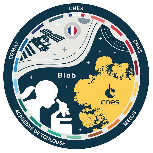 Semaine #ElèveTonBlob